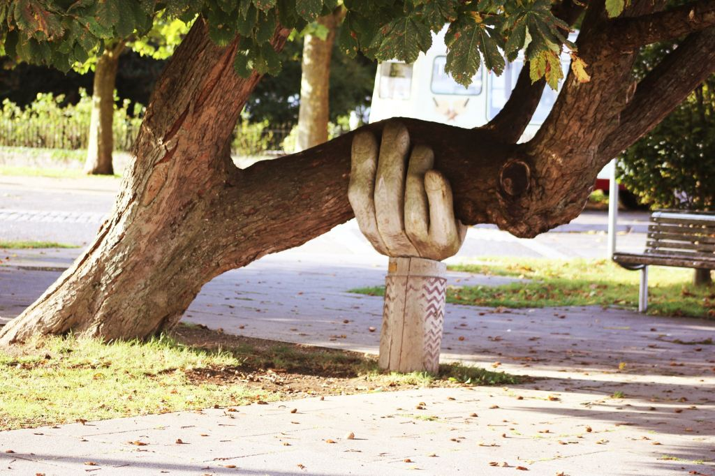 A giant hand carved out of wood holds up a precarious tree branch in a gesture of support.