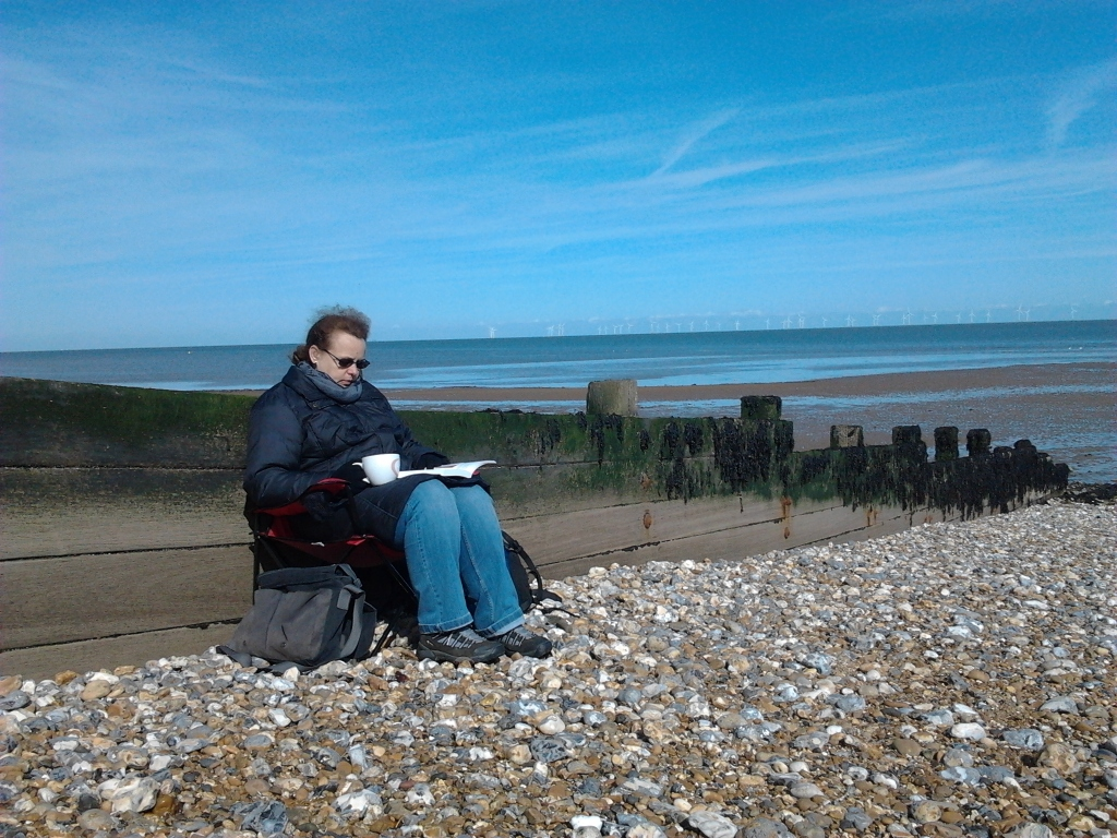 A photograph of Nicole working on her PhD on a pebbly beach.